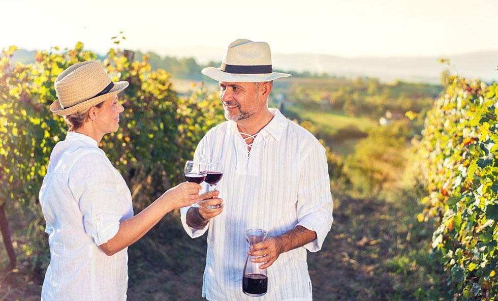 葡萄园——品珍贵醇厚美酒,享丰厚投资回报